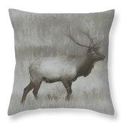 Charcoal Bull Elk In Field Throw Pillow