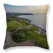 Charles Clore Park Throw Pillow