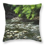 Charles On The Rocks Throw Pillow