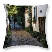 Charleston Alley 1 Throw Pillow