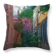 Charleston Alley In The Spring Throw Pillow