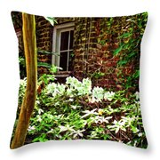 Charleston Alley Window Throw Pillow