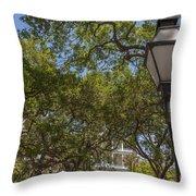 Charleston Through The Tree's Throw Pillow