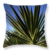Charleston Yucca Throw Pillow