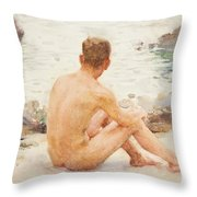 Charlie Seated On The Sand Throw Pillow