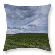 Charlotte Vermont Hay Field Farm Grass Throw Pillow
