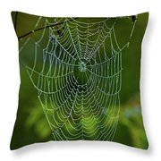 Charlotte's Web Throw Pillow