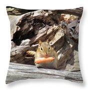 Charming Chipmunk Throw Pillow