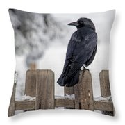 Charming Corvid Throw Pillow