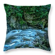 Charming Creek Walkway 1 Throw Pillow