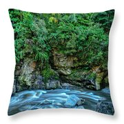 Charming Creek Walkway 2 Throw Pillow