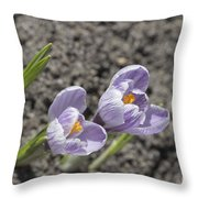 Charming Ground Force. Throw Pillow