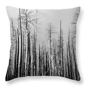 Charred Trees Throw Pillow