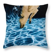 Chase 2 Throw Pillow by Jill Reger