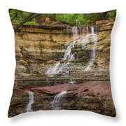 Chase Falls 762 Throw Pillow