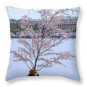 Chasing Blossoms Throw Pillow