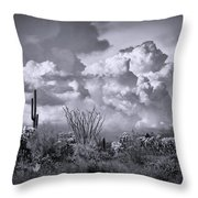 Chasing Clouds Again In Black And White  Throw Pillow