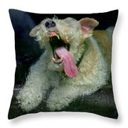 Chasing Raindrops Throw Pillow