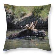 Chasing Tail Throw Pillow