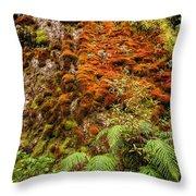 Chasm Creek Cutting Throw Pillow