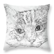 Chat Somnolant Resting Cat Throw Pillow