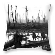 Chateau Wood France World War One  1917 Throw Pillow