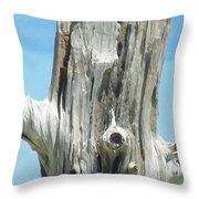 Chatham Driftwood Throw Pillow