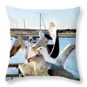 Chatty Seagull Birds Throw Pillow