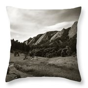 Chautauqua Night Path 2 Throw Pillow