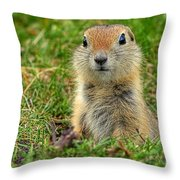 Check Out My Good Side Throw Pillow