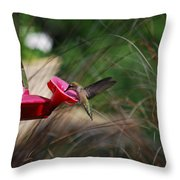 Check Out My Wings Throw Pillow