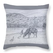 Check This Out Throw Pillow