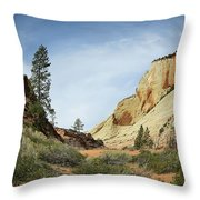 Checkerboard Mesa Throw Pillow