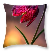 Checkered Lily Throw Pillow