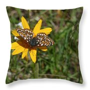 Checkerspot On Bahai Aster 1 Throw Pillow