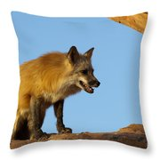 Checking My Shadow Throw Pillow by Sandra Bronstein