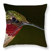 Checking Out The Photographer Throw Pillow