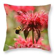Checking The Bee Balm  Throw Pillow