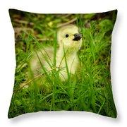 Cheeky Duckling  Throw Pillow