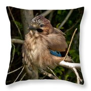Cheeky Jay Throw Pillow
