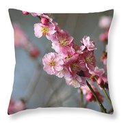 Cheerful Cherry Blossoms Throw Pillow