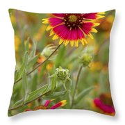 Cheerful Greeting Throw Pillow