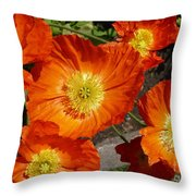 Cheerful Orange Flowers  Throw Pillow