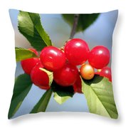 Cheery Cherries Throw Pillow