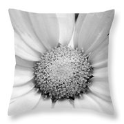 Cheery Daisy - Black And White Throw Pillow