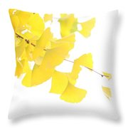 Cheery Ginkgo  Throw Pillow