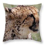 Cheetah No. 2  Throw Pillow