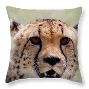 Cheetah No.1 Throw Pillow