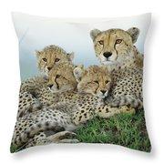 Cheetah And Her Cubs Throw Pillow