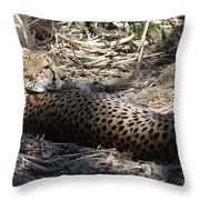 Cheetah Awakened Throw Pillow